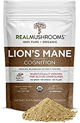 best lion's mane extract powder by real mushrooms