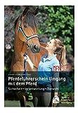 Pferdeführerschein Umgang mit dem Pferd: Standardwissen für jeden Pferdefreund - das offizielle Lehrbuch - Isabelle von Neumann-Cosel