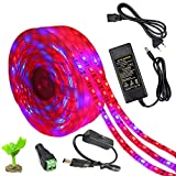 KIODS LED Tira 5050 Led Grow Lights Waterproof Dc12V Plant Growing Led Strip Light Tape Set con Interruptor de Encendido para jardín Acuario Invernadero