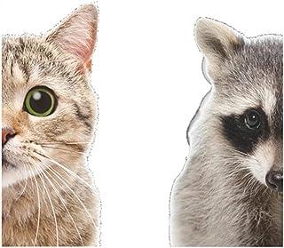 Funny 3D Cat Raccoon Half face Peeking Wall Sticker Art Decals Door Decorations Cute Animal Window Stickers for Home Decor