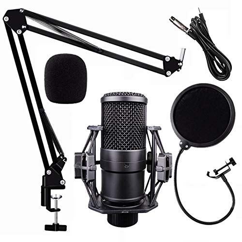 XLR Condenser Microphone, StreamPower M260...