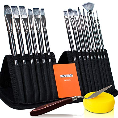 Rock Ninja Paint Brush Set, 17Pcs Artist Paint Brushes Includes Pop-up Carrying Case,for Acrylic,...