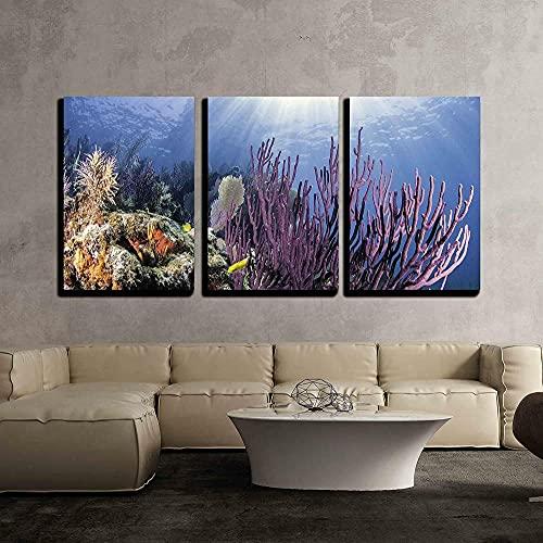 YYUI 3 Piezas De Arte Moderno Arrecifes De Coral De América del Norte Marco De Madera 150X70Cm 3 Piezas Moderno Cuadro En Lienzo 3 Piezas Salón De Hogardecoracion De Pared