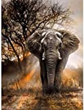 DIY Cross Stitch Counted Stamped Embroidery Starter Kits 11CT- Elephant Sunset 16x20 inches -Beginners Adults Cross-Stitching Pattern Supplies Needlework Home Decoration