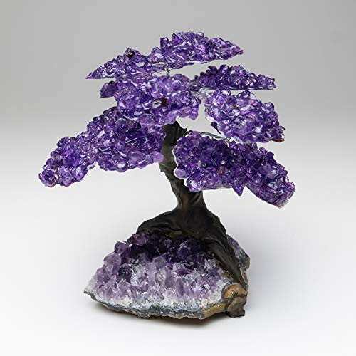 Large Amethyst Clustered Gemstone Tree (15 Petals) On Amethyst Matrix
