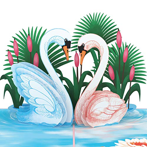 Unipop Cards Swan Love Pop Up Cards, Valentines Day Card for Anyone, Lovebirds pop up card, Happy Birthday Card, Mothers Day Greeting Cards, Love Pop Up Card, Anniversary 3D Greeting Cards, (Love Pop Up Card)