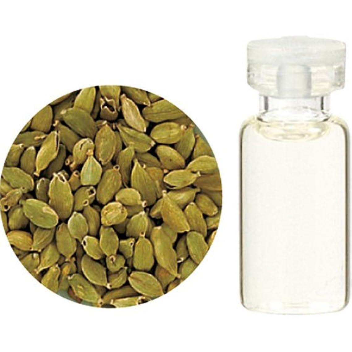 石炭適切に粒子Herbal Life カルダモン10ml