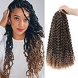 8 Packs Passion Twist Hair 22 Inch Passion Twist Crochet Hair For Black Women Freetress Water Wave Crochet Braiding Hair Extensions (22 inch, 1B/27)