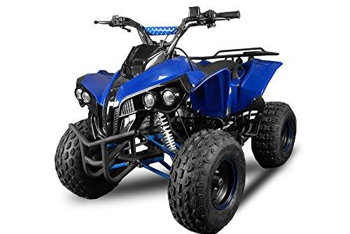 Pro kxd Warrior 2012 Edition Quad ATV 125 CCM 1-Zylinder, 4-Takt, luftgekühlt Metallic