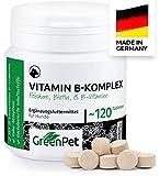 GreenPet Vitamin B Komplex für Hunde - 8 B-Vitamine, Biotin, Folsäure, Mineralstoffe, Hochdosiert für alte Hunde (Senior), Junge und Welpen, Made in Germany, 120 Tabletten für bis zu 4 Monate