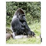 Travel Gorilla Blankets - Best Reviews Guide