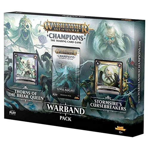 PlayFusion Warhammer Age of Sigmar: Champions Warband Collectors Pack English