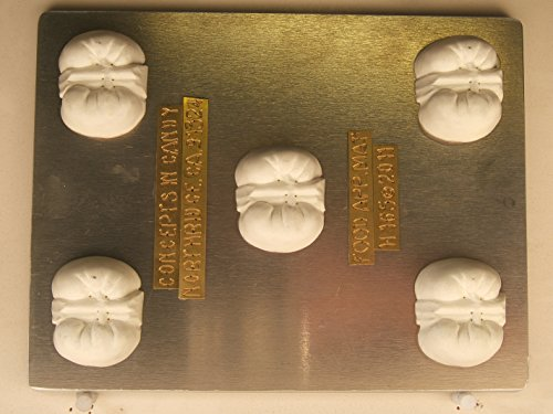 Kidney Renal Urinary and Endocrine System H165 Chocolate Candy Mold