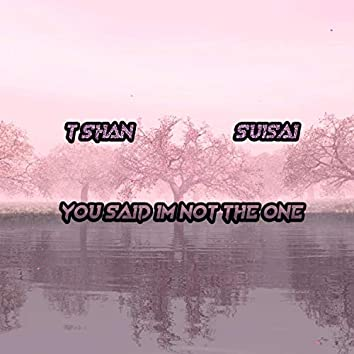 You Said I'm Not the One (feat. SuiSai)