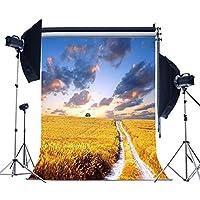 laeacco 3x 5ft写真背景アウトドアCountryside田舎景色ゴールデンフィールドファームCloudy Sky For Kids幼児子供個人肖像画写真バックドロップStudio 1x 1.5M小道具