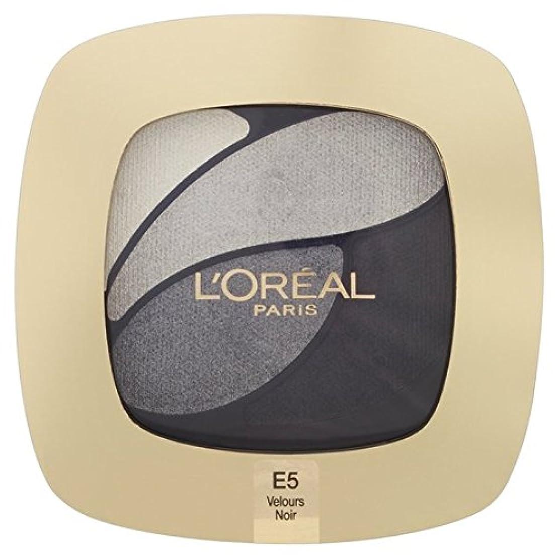 ものアサート不純L'Oreal Paris Color Riche Quad, E5 Incredible Grey 30g - ロレアルパリのカラーリッシュクワッド、5信じられないほどの灰色の30グラム [並行輸入品]