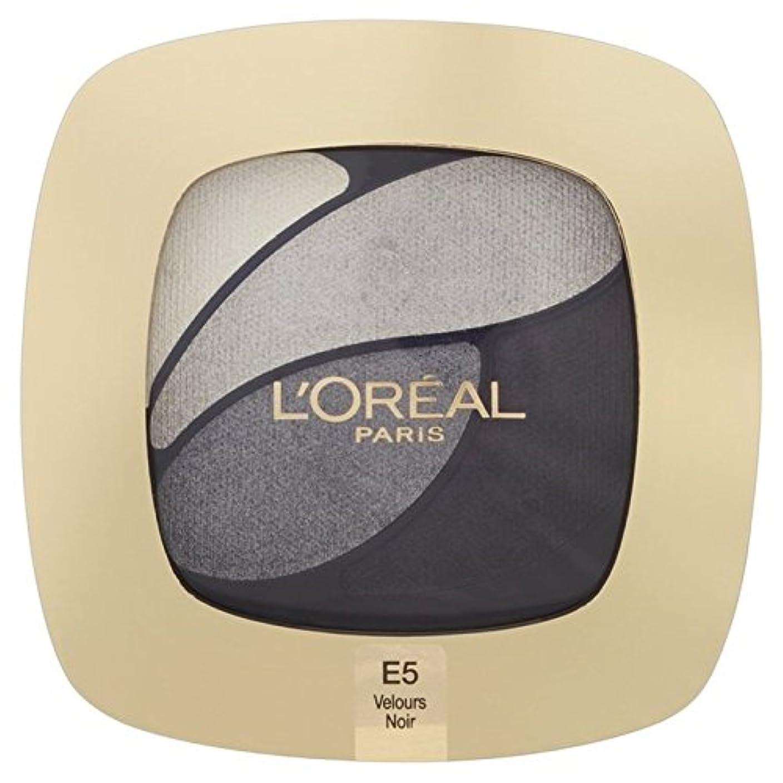 液体クアッガ動物L'Oreal Paris Color Riche Quad, E5 Incredible Grey 30g (Pack of 6) - ロレアルパリのカラーリッシュクワッド、5信じられないほどの灰色の30グラム x6 [並行輸入品]