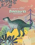 Carnet de croquis Dinosaures Hadrosaurus: Cahier de Dessin pour Enfant, Grand Format,120 Grandes pages blanches   20,32 cm x 27,94 cm, croquis esquisses Schémas. (French Edition)