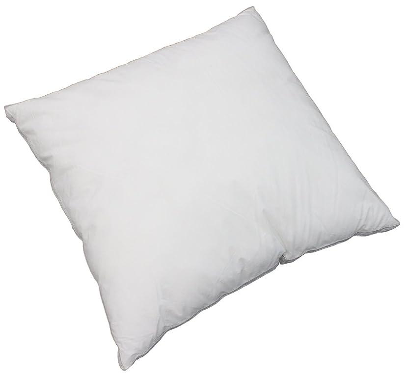 インストール世代自然公園Danfill 枕 ピロー ホワイト 洗える 軽い 保温性 アレルギー予防 80×80cm フィベールピロー ヨーロピアンサイズ フィベール JPA024