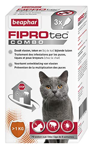 Beaphar – FIPROTEC COMBO au Fipronil et (S)-Méthoprène dosés à 50 mg/60 mg – Solution...