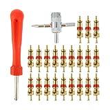 VICASKY 1 Juego de Herramientas de Eliminación de Vástago de Válvula de Neumático con 30 Piezas de Núcleos de Válvula de 4 Vías Herramienta de Reparación de Neumáticos de Válvula de Doble