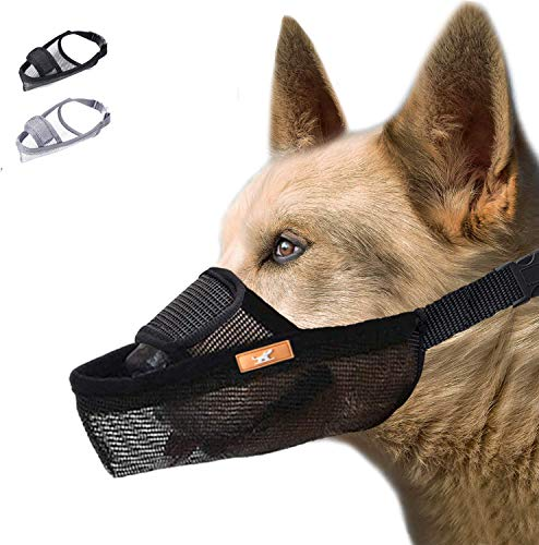 wintchuk Dog Muzzle, Dog Mouth Guard Mesh for Barking Chewing Biting, Soft Muzzle for Small Medium Large Dogs, Able to Pant and Yawn, Adjustable (XS, Black)