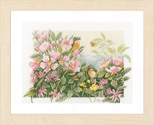 LANARTE PN telpatroon vogels & wilde rozen tellstof kruissteekverpakking, katoen, meerkleurig, 37 x 25 x 0,3 cm