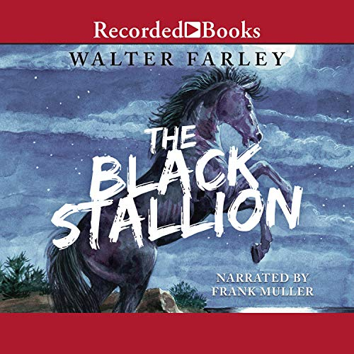 The Black Stallion  By  cover art