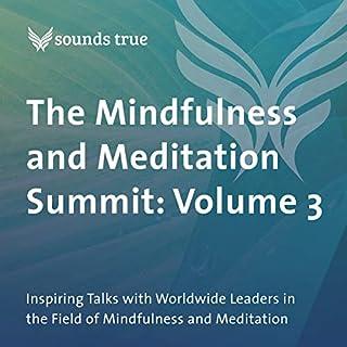 Page de couverture de The Mindfulness and Meditation Summit: Volume 3