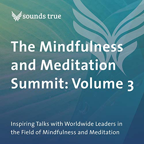 Page de couverture de The Mindfulness and Meditation Summit: Volume 3