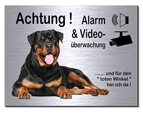 Rottweiler-Alarm-Video-Überwachung-Hund-20 x 15 cm-Schild-Hundeschild-Aluminium Edelstahloptik-Hunde-Tierschild-Warnschild-Hinweisschild (249-10 -20 x 15 cm mit Löcher)