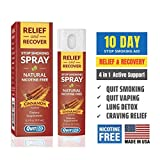 QuitGo Herbal Spray, Instant Craving Relief & Recovery, Calming, Effective, Satisfying Nicotine-Free Stop Smoking Remedy, Helps Prevent The Urge to Smoke All Day (Cinnamon, Single Pack)