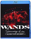 邦楽 WANDS Streaming Live 〜BURN THE SE...
