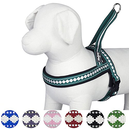 Blueberry Pet Geschirre Klassisch Einfarbig Neopren Hundegeschirr mit Zugentlastung in...