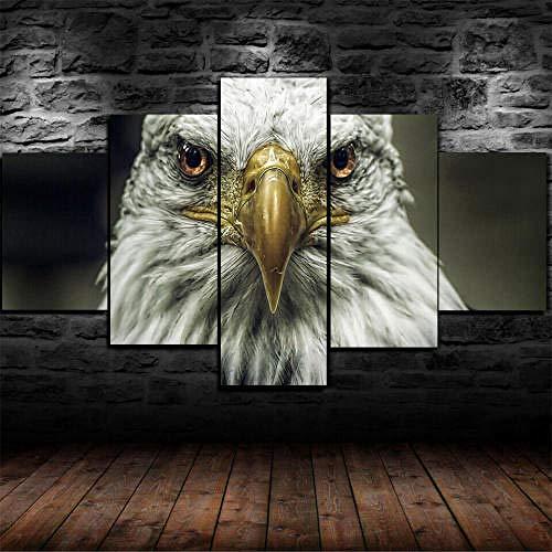 Cuadro Sobre Lienzo 5 Piezas Impresión En Lienzo Ancho: 150Cm, Altura: 100Cm Listo Para Colgar-Águila Mirada Ojos Ave Rapaz En Un Marco