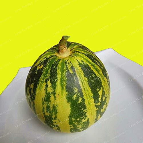 Bloom Green Co. Cucumis Melo Bonsai seltene exotische Goldene Melone Bonsai Pflanzengarten Gewächshaus Einpflanzen Juicy Xiang Gua Bonsai 50 PC: 3