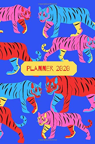 2020 Planner : Jan - Dec  Calendar With Daily Schedule And Monthly Overview: Academic Schedule Agenda Logbook Or Student Planner | Fun Colorful Tiger Cover