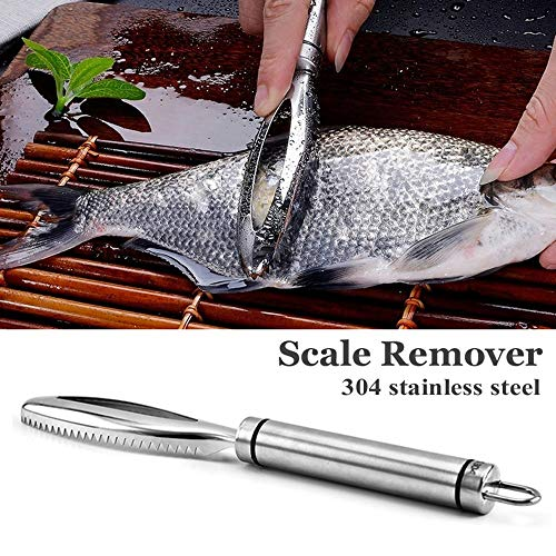 MZY1188 Removedor de Escamas de Pescado,Raspador de Escamas de Pescado de Acero Inoxidable Limpiador de raspador de pez...