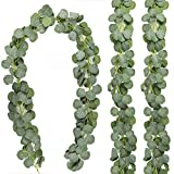 CEWOR 3 Packs Artificial Eucalyptus Leaves Garland Artificial Vines Faux Silver Dollar Greenery Eucalyptus Plants for Wedding Party Home Decoration