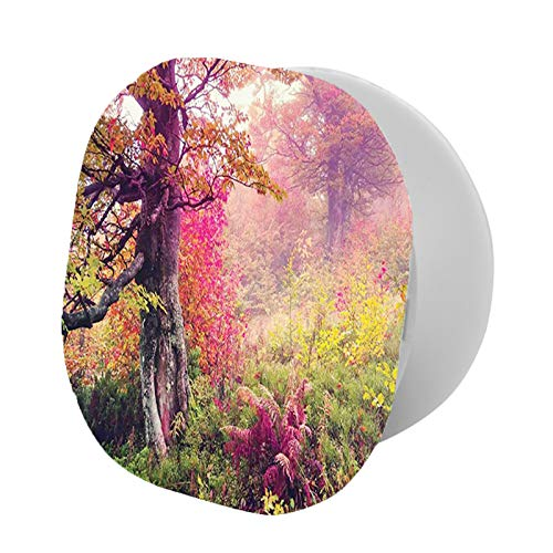 Adjustable Cell Phone Stand,Fairy Majestic Landscape with Autumn Trees in Forest Natural Garden in Ukraine,Compatible with All phone