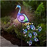DenicMic Peacock Solar Pathway Lights Outdoor, Solar Powered Garden Stake Decorative Yard Art Metal & Glass Waterproof for Patio Landscape Lawn Pathway Courtyard 42 inch