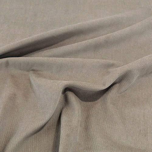 TOLKO 1m Baby Cord Stoff | feiner Baumwoll Cordsamt | Bekleidungsstoff für Hosen Jacken Kleider | weiche querelastische Meterware 140cm breit | uni Baumwollstoffe Nähstoffe günstig kaufen (Beige)