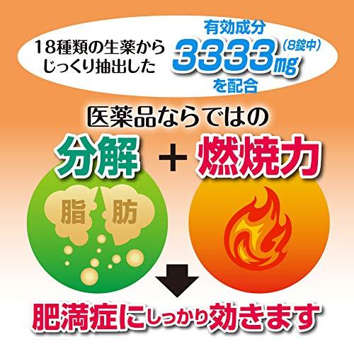 ロート製薬和漢箋『新・ロート防風通聖散錠T』