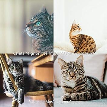 Chats Mignonnes Impeccable (Humeurs)