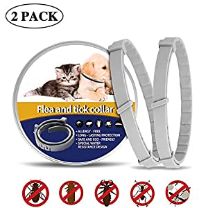 MIUSSAA 2 Pack Pet Collar - Dogs and Cats for 8-Month Validity Period Adjustable Waterproof Pet Collar Fits All