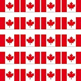 GreenIT 20 Stück 2cm Fahne Länder Flagge CAN CDN Kanada RC Modellbau Mini Aufkleber Sticker Modellbauaufkleber