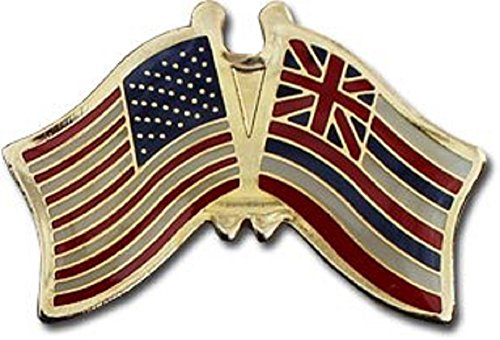 AES Wholesale Pack of 24 USA American State Hawaii Flag Bike Hat Cap Lapel Pin