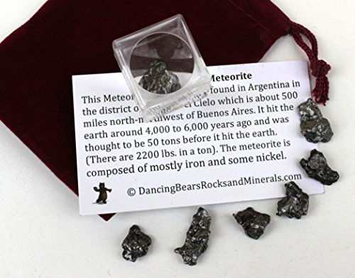 Dancing Bear Brand Meteorite from Space, 6 pcs Campo del Cielo from Argentina/ Educational Card & Magnifying Box, Dancing Bear Brand by Dancing Bear