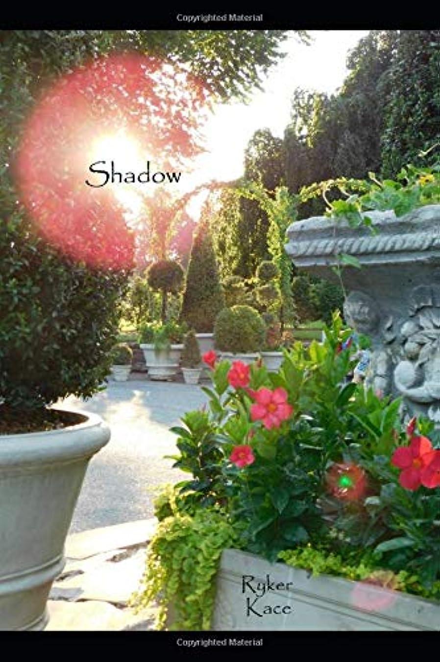 冷凍庫背骨乱雑なShadow