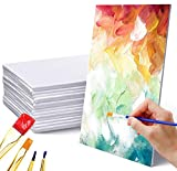 Superise Canvas Panels, 11x14 Inch Canvas Boards, 32 Pack, Large Art Canvases for Painting. Primed 100% Cotton, Value Bulk Pack for Painting, Acrylic Pouring, Oil Paint & Artist Media